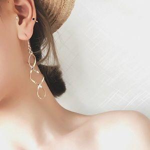 Jewelry - Long Double Loop Dangle Earrings iSilver & Gold